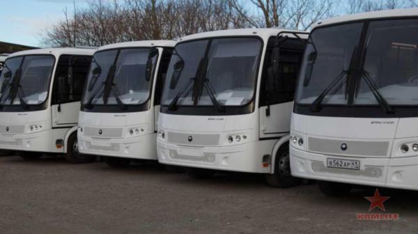 new-buses01.jpg